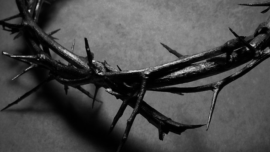 DARK GTC SITE crown-of-thorns